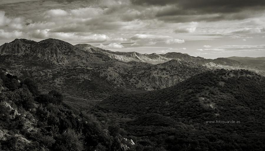 Al fondo, las sierras del Caíllo y de Ubrique